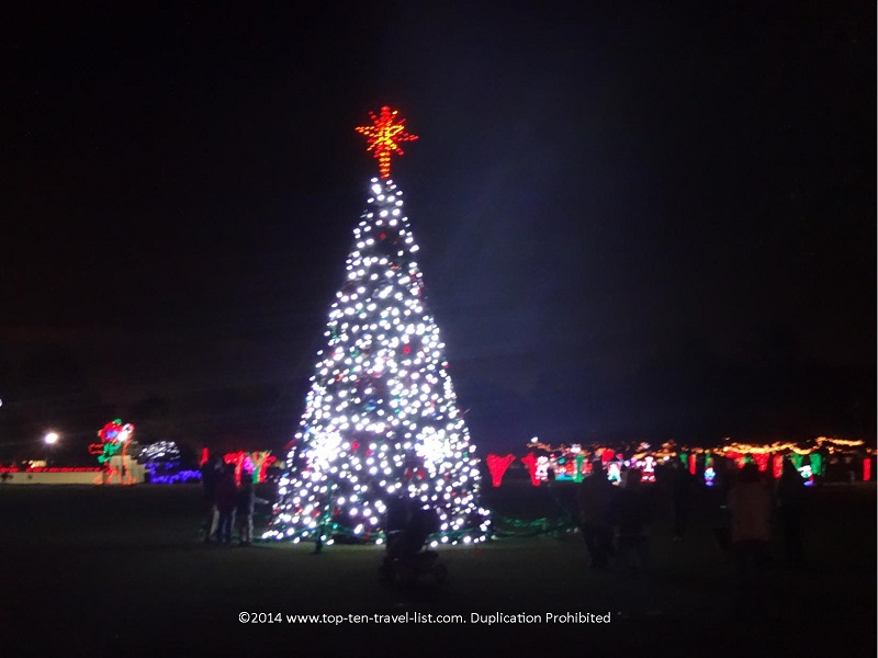 The Christmas Tree at Largo Central Park in Florida