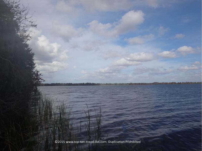 Pretty lake views along alligator alley at Circle B Bar Reserve in Lakeland, Florida