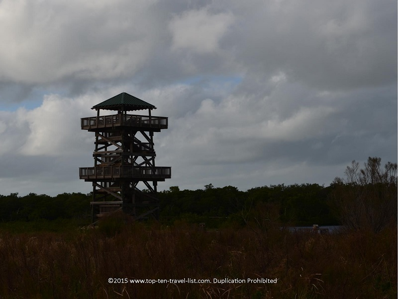 A view of the 40 foot observation tower, from the trail.