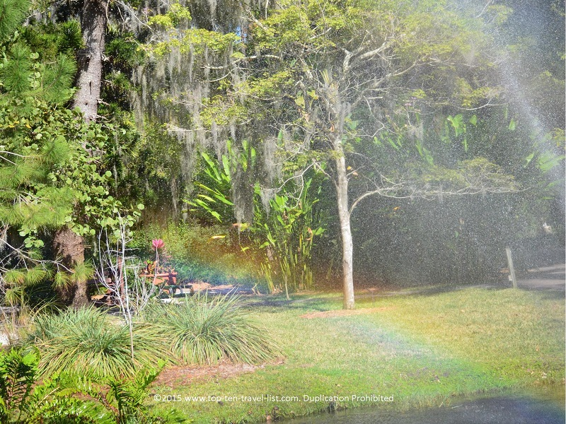 Pretty rainbow at Sarasota Jungle Gardens