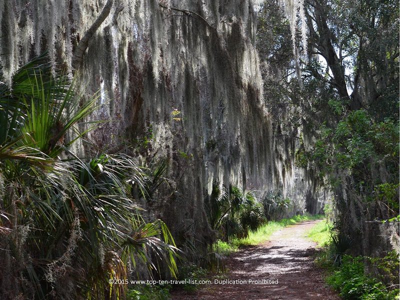 Alligator Alley trail at Circle B Bar Reserve in Lakeland, Florida