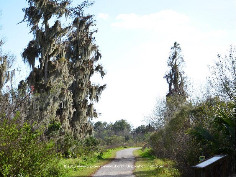 Windmill trail at Circle B Bar Reserve in Lakeland Florida