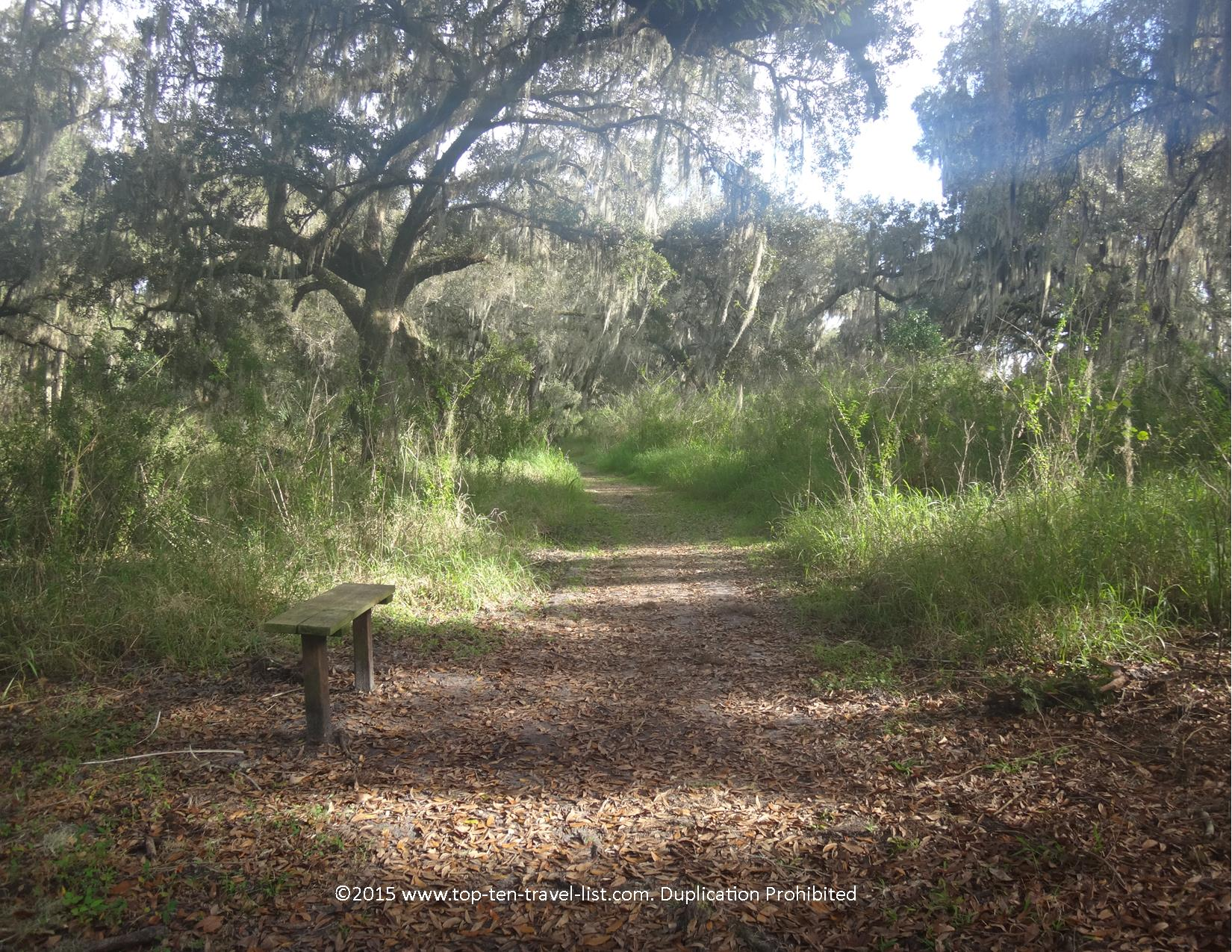 A view of the Tree Hopper Trail at Circle B bar Reserve in Lakeland, florida