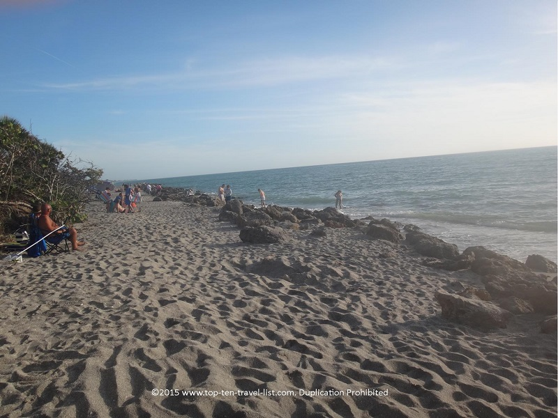 Best Beach In Florida To Find Shark Teeth