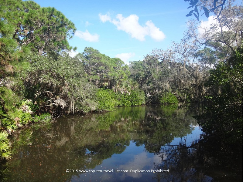 Pretty water view at Oscar Scherer State Park in Osprey, Florida