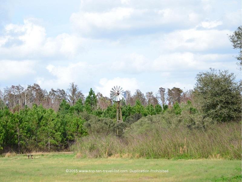 Windmill trail at Circle B Bar Reserve in Lakeland, Florida
