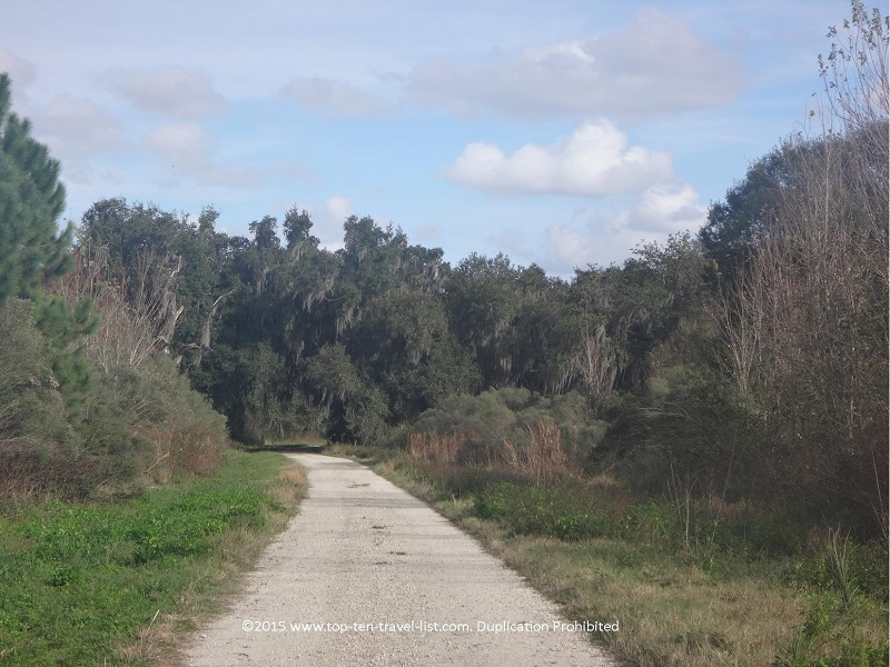 Tree lined views along the Windmill Trail at Circle B Bar Reserve in Lakeland, Florida
