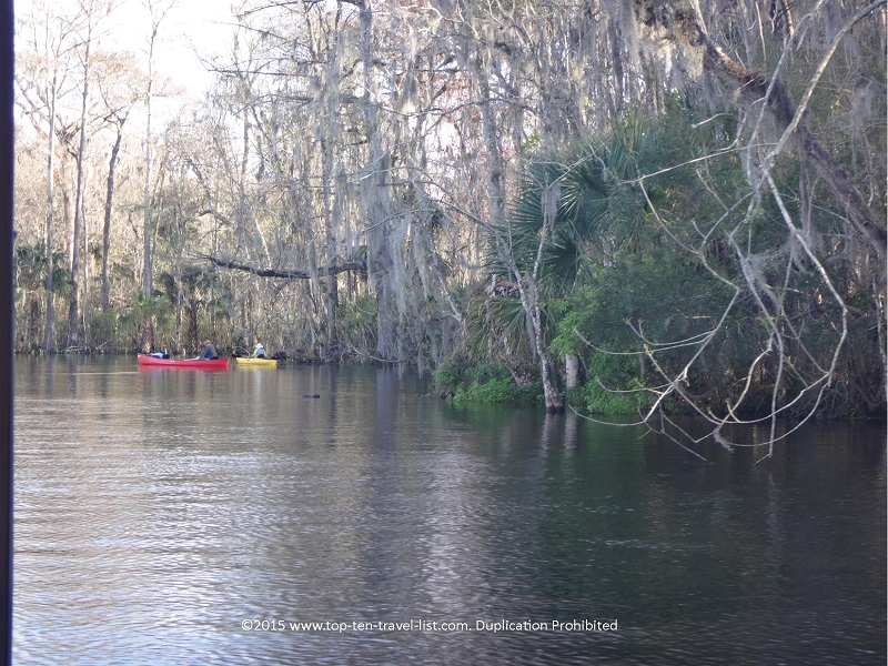 Both kayak tours and rentals are available.