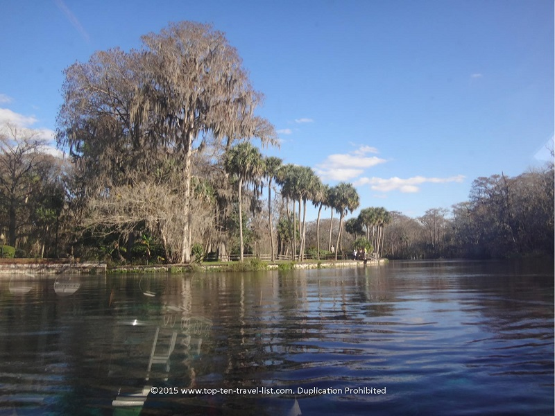 Beautiful scenery at Silver Springs State Park in Ocala, FL