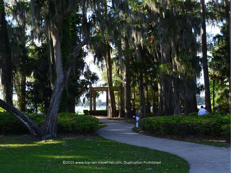 Beautiful trees at Kraft Azlea Gardens in Winter Park, Florida