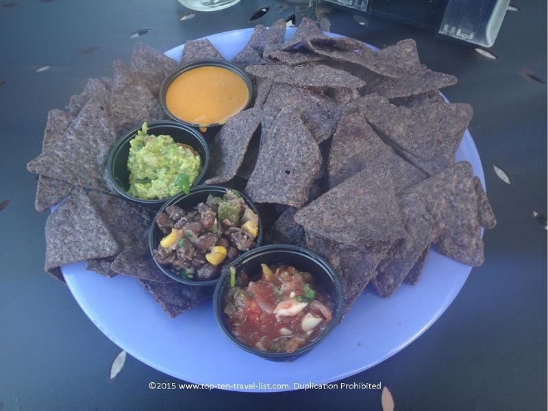 The chips and dips appetizer, consisting of whirled peas guacamole, vegan queso, black bean salsa, and pico de gallo is a wonderful starter!