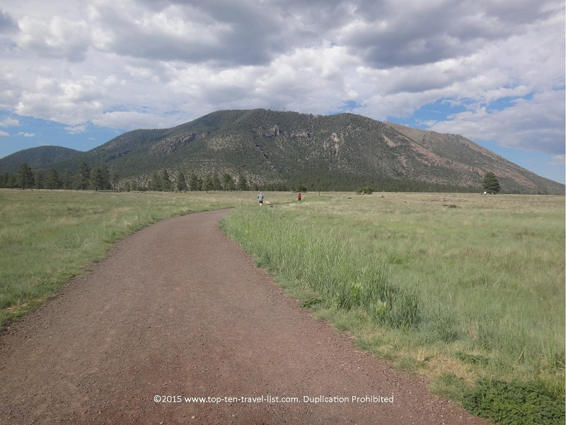 A view of the trail at Flagstaff's Buffalo Park