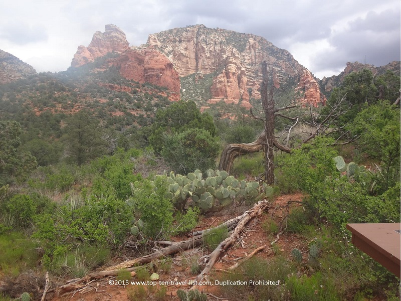 Pretty scenery along Sedona's Chuckwagon Trail