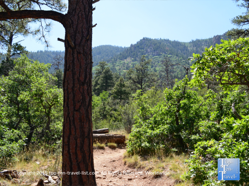 Fantastic mountain views on Flagstaff's Fatman's loop trail