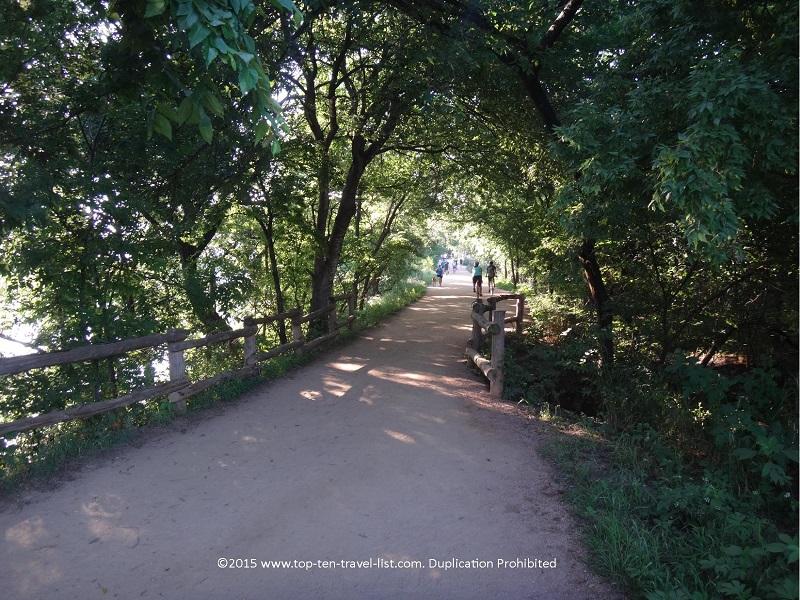 Tunnel of trees on Austin's beautiful Lady Bird Lake trail