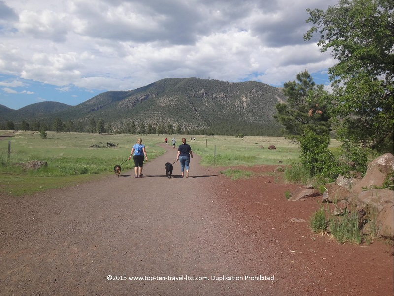 Dog walkers enjoying Flagstaff's beautiful 2 mile loop at Buffalo Park