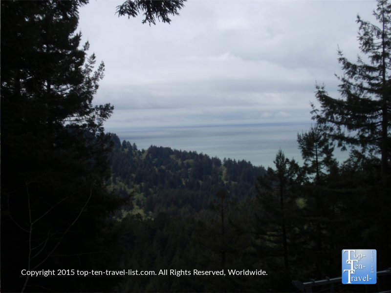 Views of the Pacific Ocean from the Sky Trail ride at Trees of Mystery in Northern California