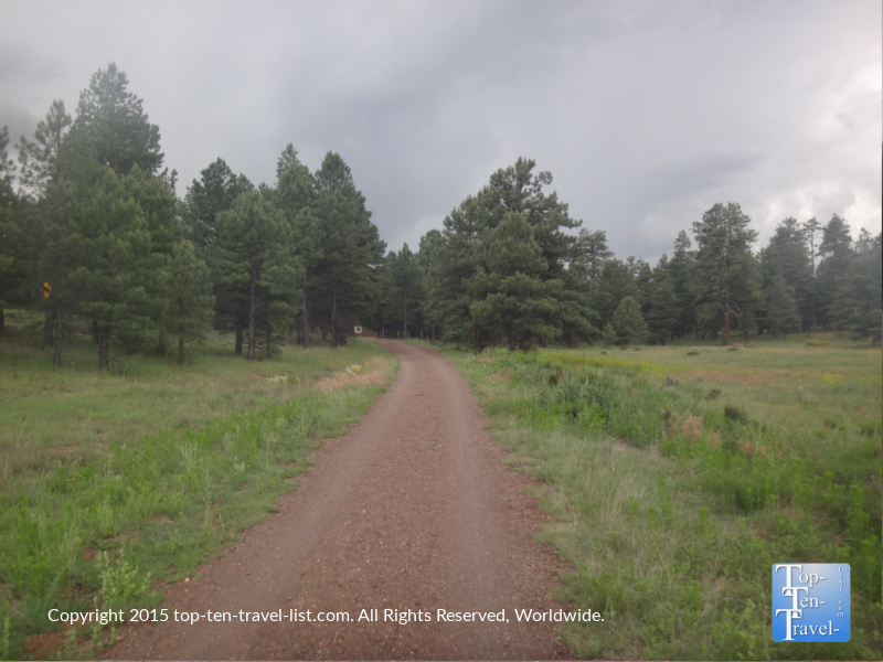 A stormy summer afternoon on the Flagstaff Urban Trail at Fort Tuthill Park