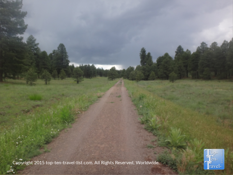Summer storm making its way at Fort Tuthill County Park in Flagstaff, Arizona