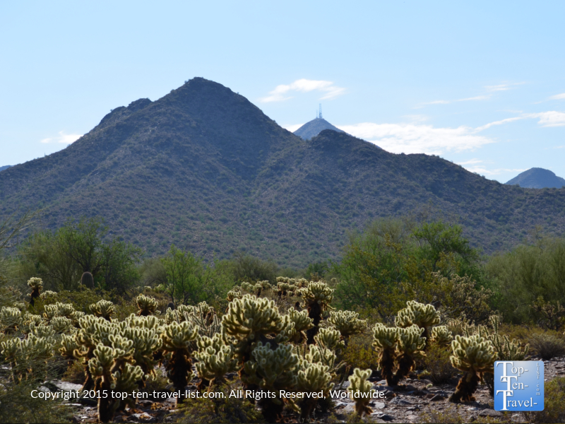 Great mountain views and desert scenery along the Horseshoe Loop trail at McDowell Sonoran Preserve in Scottsdale, Arizona