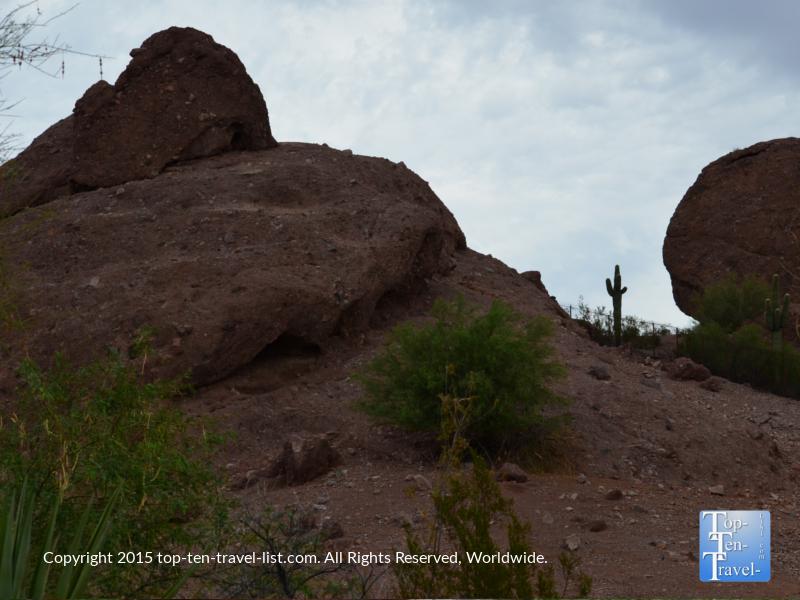 Scenic rock formatio at the Phoenix Zoo