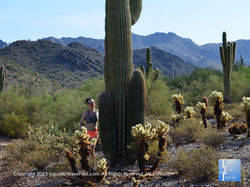 Standing next to an enormous cactus on the Horseshoe Loop at the McDowell Sonoran Preserve in Scottsdale, Arizona
