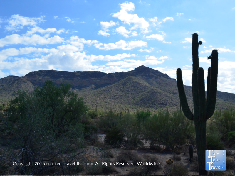 Great mountain views along the Merkle trail at Usery Mountain in Mesa, Arizona