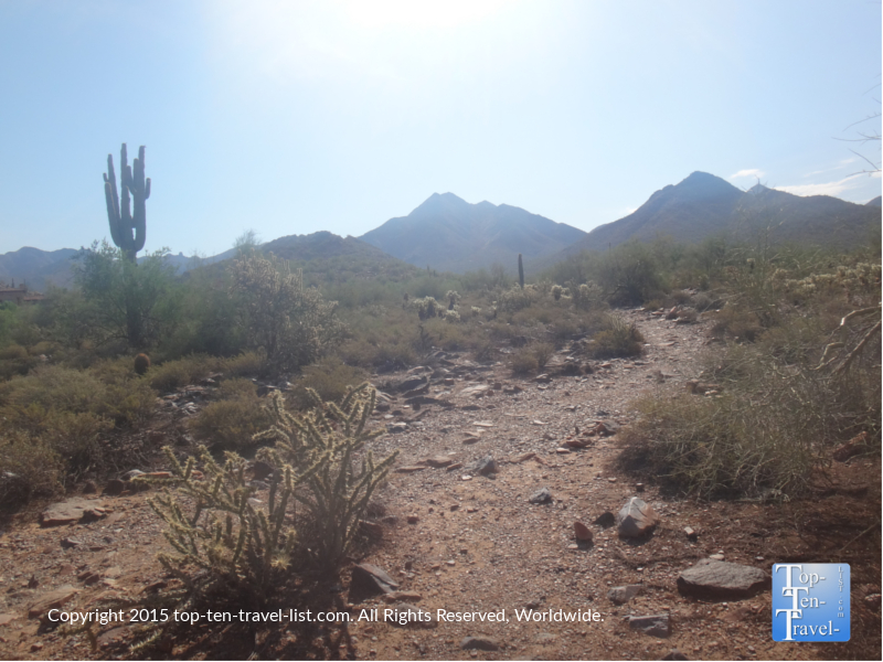 Horseshoe loop trail at Scottsdale's McDowell Sonoran Preserve