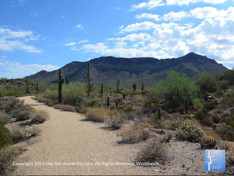Beautiful views along the Merkle trail at Usery Mountain in Mesa, Arizona
