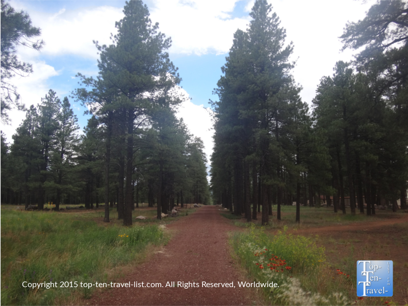 Great views along the FUTS at Fort Tuthill County Park in Flagstaff, Arizona