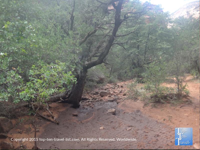 Dry stream on the Fay Canyon Trail in Sedona, Arizona