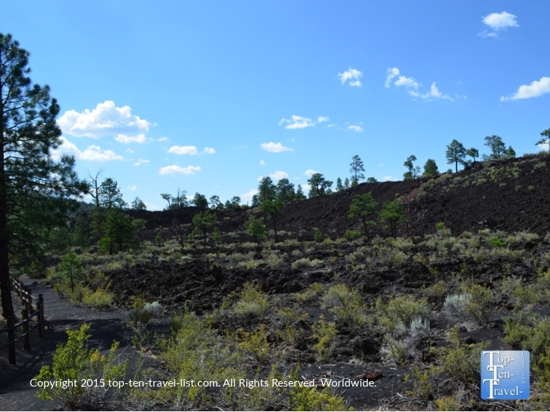 Views along the Lava Flow trail at Sunset Crater National Monument in Flagstaff, Arizona