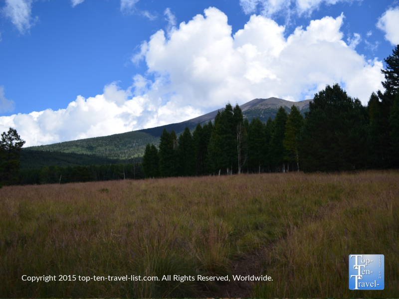 Pretty mountain views along the Aspen Nature loop trail in Flagstaff