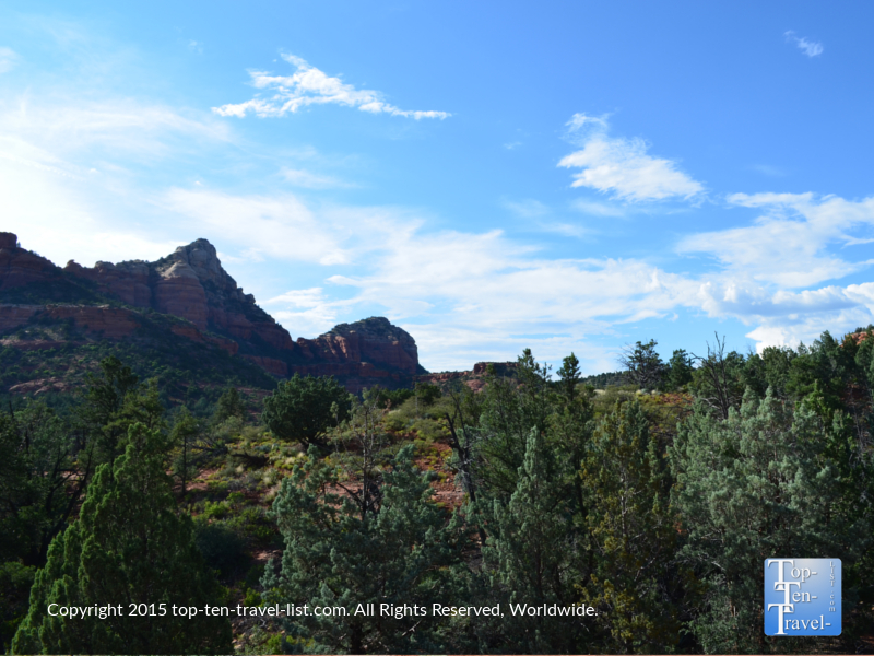 Beautiful forest scenery on Sedona's Soldier's Pass trail