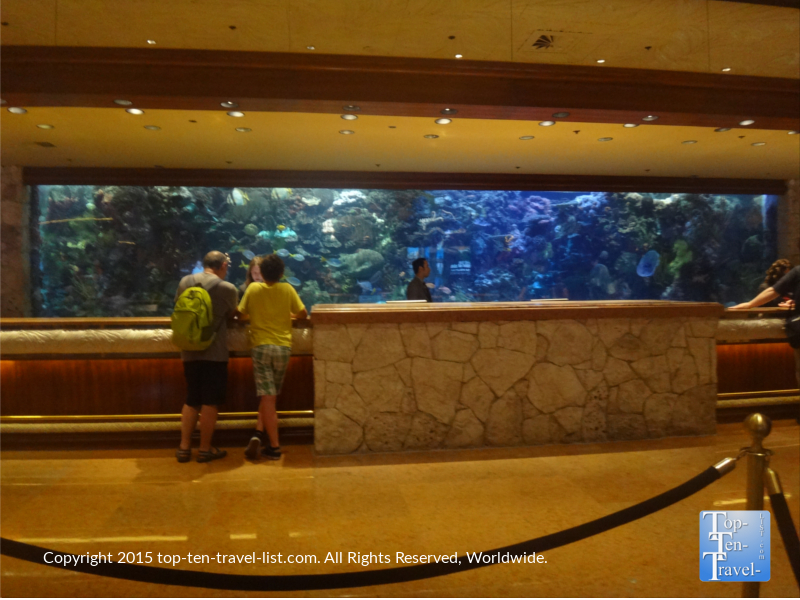 The Mirage Aquarium behind the check out desk in Las Vegas, Nevada