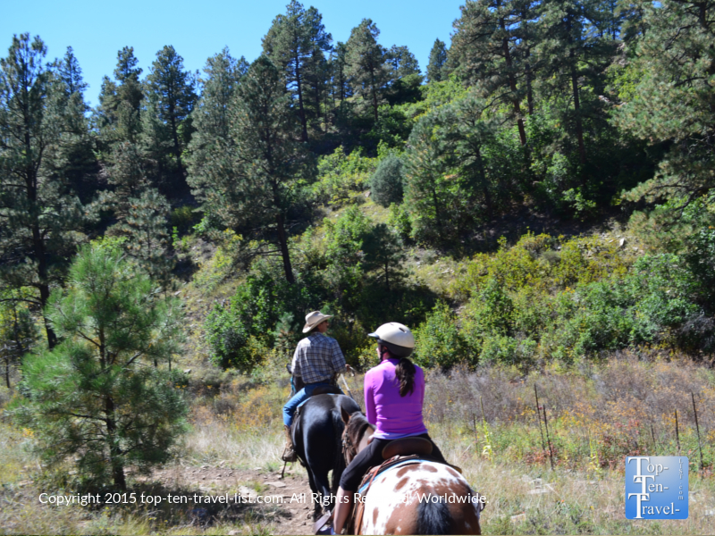 A beautiful horseback ride through Martinez Canyon in Pagosa Springs, Colorado