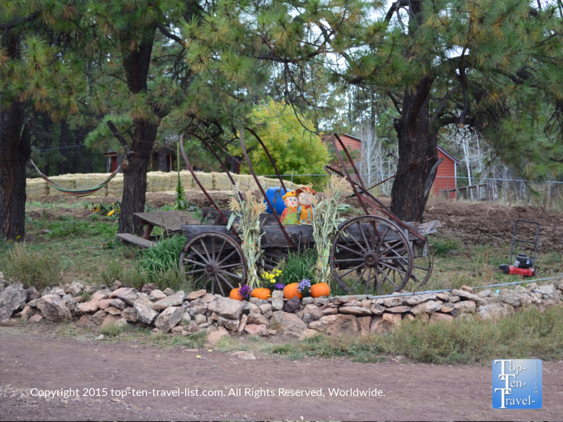 Seasonal fall decor at Hitchin Post Stables in Flagstaff, Arizona