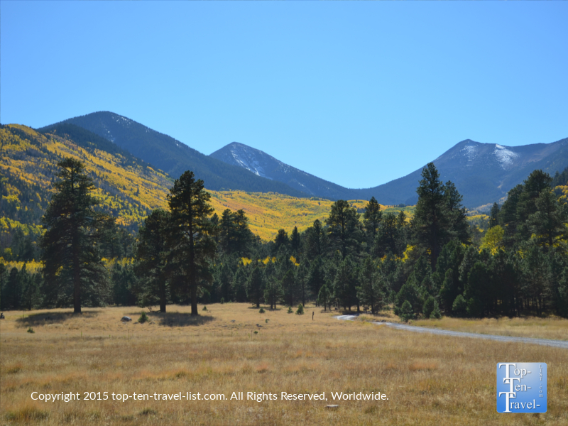 Pretty views of the mountains covered with fall foliage near the Inner Basin trail in Flagstaff, Arizona