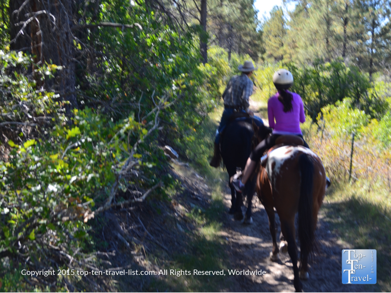 A fantastic peaceful trail ride through Diamond Hitch Stables in Pagosa Springs, Colorado