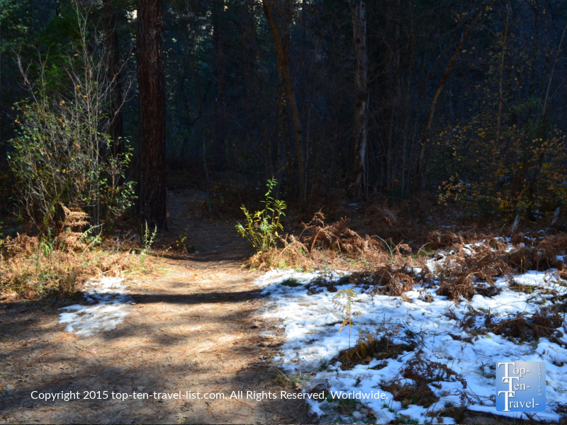 snow on sedona's west fork trail