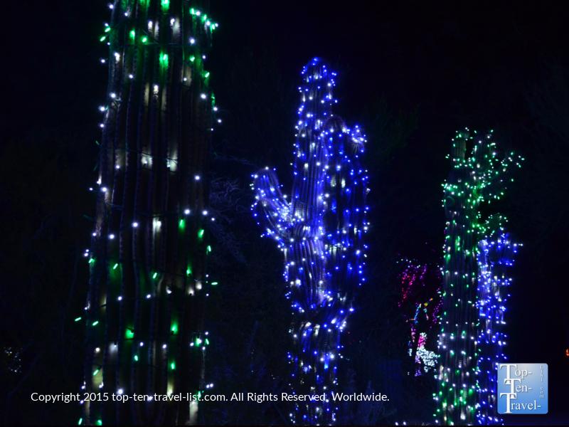 Christmas cactus at the Phoenix Zoo Lights