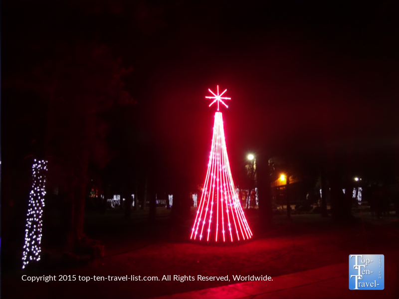 A pretty tree as part of the synchronized light show at Bearizona in Williams, Arizona