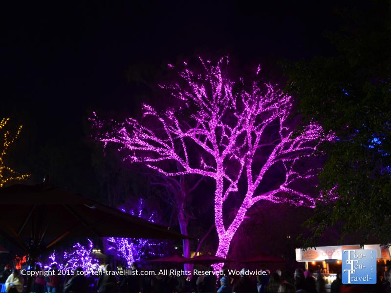 Pretty purple lights at Pheonix Zoo Lights