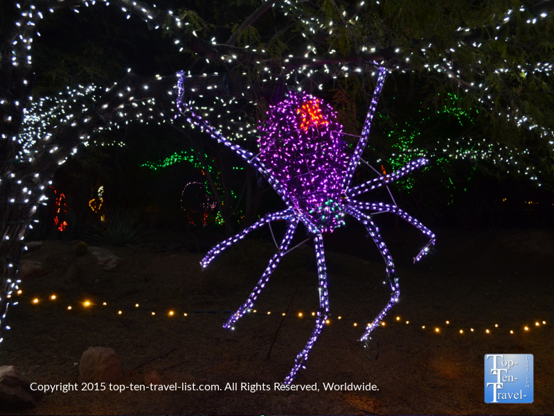 Spider display at the Phoenix Zoo lights