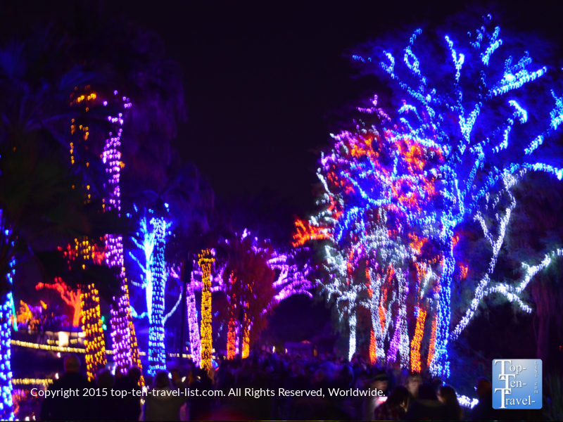 Walking through the synchronized light show at the Phoenix Zoo.