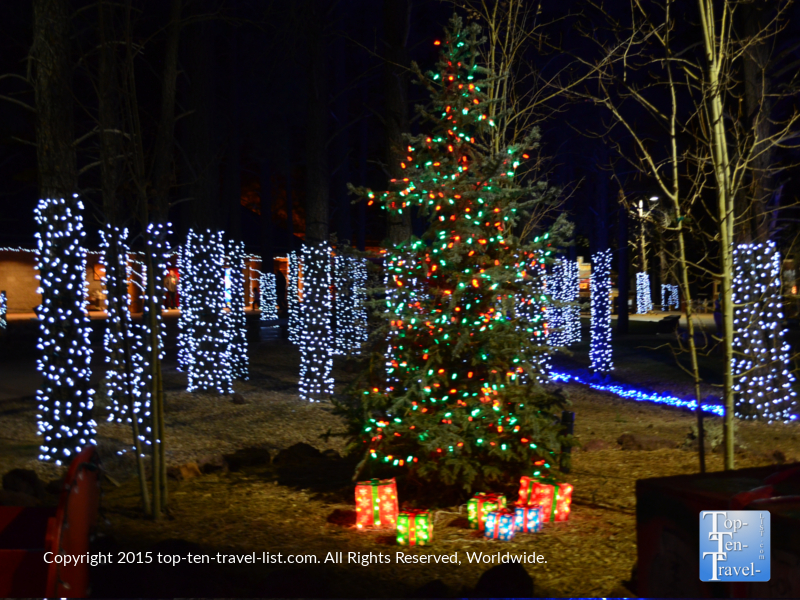A beautiful Christmas tree and lights at Wild Wonderland at Bearizona in Williams, Arizona