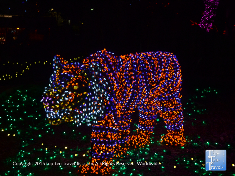 Tiger display at the Phoenix Zoo Lights