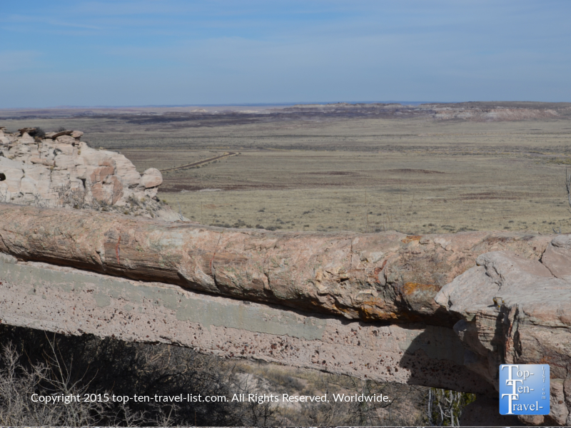Agate Bridge at the Petrified National Forest