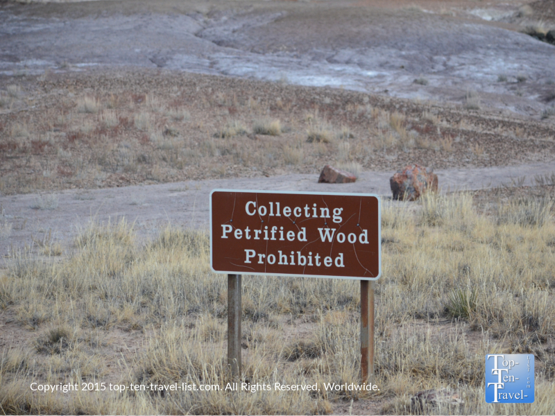 Collecting Petrified wood is illegal sign at the Petrified National Forest