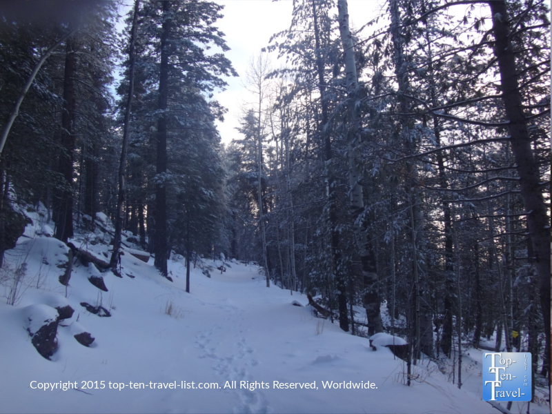 Snowshoeing Veit Springs trail in Flagstaff after a major winter storm